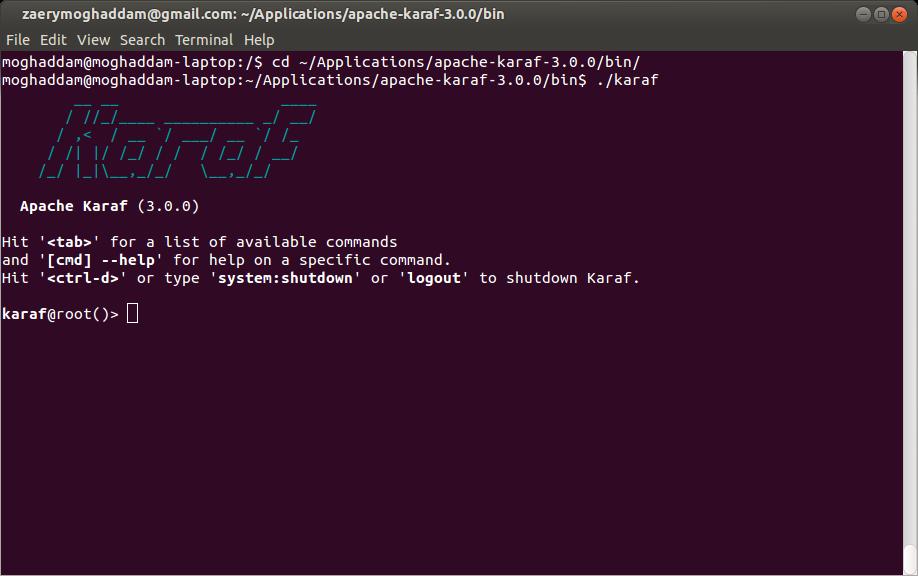 Apache Karaf Console Startup
